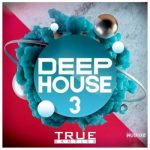 House风格素材 – True Samples Deep House 3 WAV MiDi REVEAL SOUND SPiRE