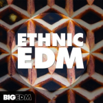 Big EDM Ethnic EDM WAV MiDi LENNAR DiGiTAL SYLENTH1 REVEAL SOUND SPiRE-DISCOVER