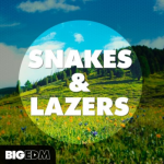 Big EDM Snakes And Lazers WAV MiDi XFER RECORDS SERUM-DISCOVER