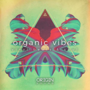 嘻哈素材 – Origin Sound Organic Vibes Vinyl Beats And Soul WAV MiDi-DISCOVER