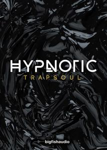 现代电音 – Big Fish Audio Hypnotic Trapsoul KONTAKT