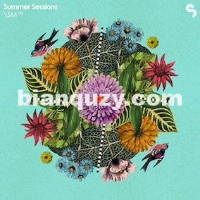 Sample Magic Summer Sessions Inspiration Loops Wav/Rex2/Apple Loops